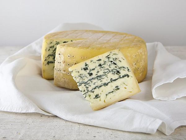 Friesisch Blue